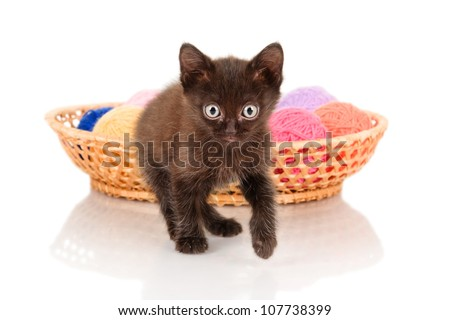 little kitten with balls of threads.  isolated on white background - stock photo