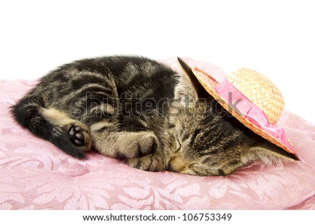 Little kitten with straw hat sleeping on a pink pillow - stock photo