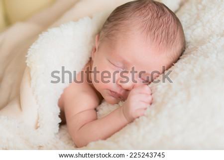 little newborn baby sleeps under a warm blanket - stock photo