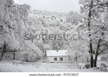 Little old cottage in remote forests - winter landscape