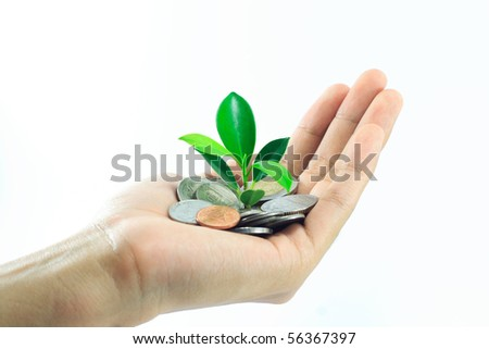 little plant growing from pile of coins on hand - stock photo