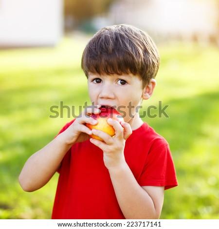 Little preschooler boy eat apple, outdoor portrait - stock photo