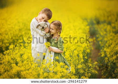 Little pretty girl in green dress with white apron and young boy holding a rabbit in the field of flowering yellow mustard on a sunny summer day. Kids and nature. Children in country. Beautiful flora - stock photo