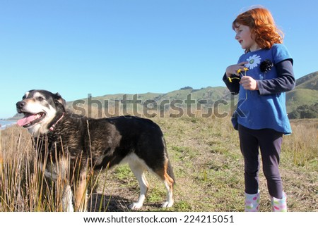 little red haired girl with black sheep dog on top of a grassy sand hill  - stock photo