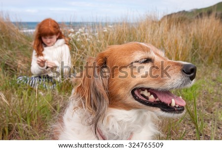 little red haired girl with red haired collie type dog sitting among long dune grass on a sand dune at a surf beach, near Gisborne, East Coast, North Island, New Zealand