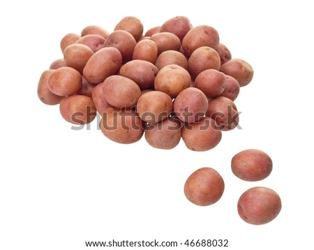 Little red potatoes on pure white background - stock photo