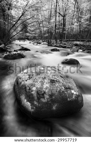 Little River, Great Smoky Mountains National Park - stock photo