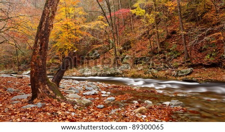 Little river , great smoky mountains national park. Autumn colors. - stock photo