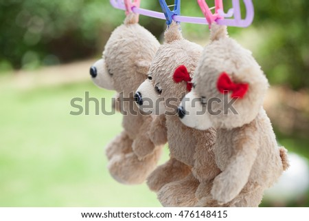 Little teddy bear on clothes line natural background