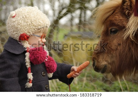 little toddler feeding a pony - stock photo