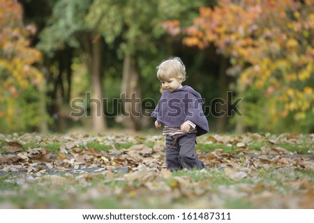 little toddler in an autumn park