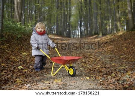little toddler plain outdoors , fall season - stock photo