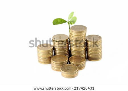 Little tree grows from bunch of coins, close-up - stock photo