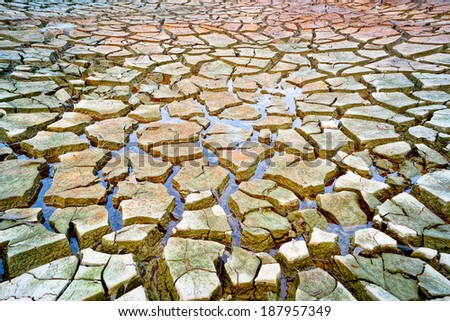 little water left on cracked earth  - stock photo