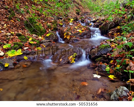 Little water stream flowing through autumn forest