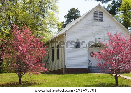 Little white church surrounded with pink Dogwood trees. - stock photo