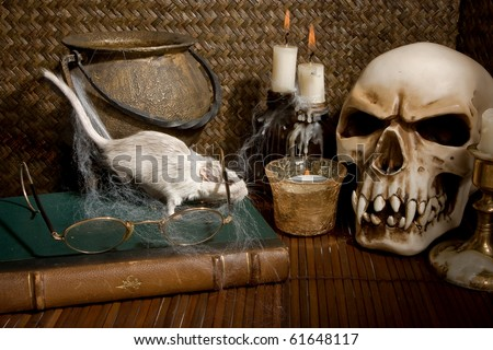 Little white gerbil rat visiting a halloween skull - stock photo