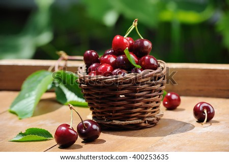 Little wooden basket of fresh ripe cherries on the wooden table - stock photo