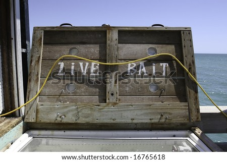 live bait available at cooler on peer - stock photo