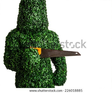 Live bush pose holding old hand saw, isolated on a white background. Studio photo.