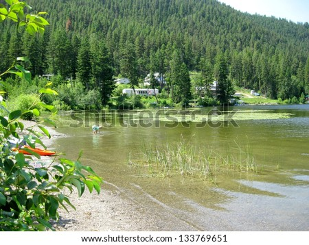 Living at the lake in the summertime - stock photo