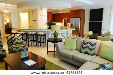 Living hall with open kitchen in luxury house