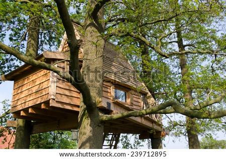 Living in a tree house surrounded by branches in the netherlands - stock photo