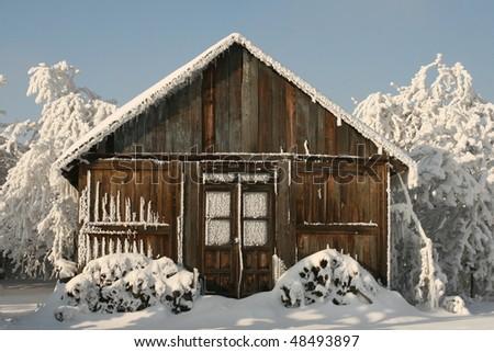living in snow - stock photo