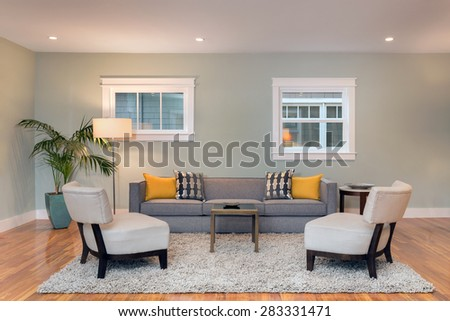 Living Room Interior with two unlike traditional windows.  - stock photo