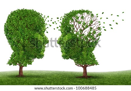 Living with a dementia patient and alzheimers disease with two trees in the shape of a human head and brain as a symbol of the stress and effects on loved ones and caregivers by the loss of memory. - stock photo