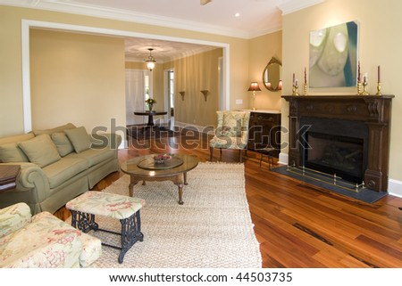 livingroom with fireplace, painting is photographers work