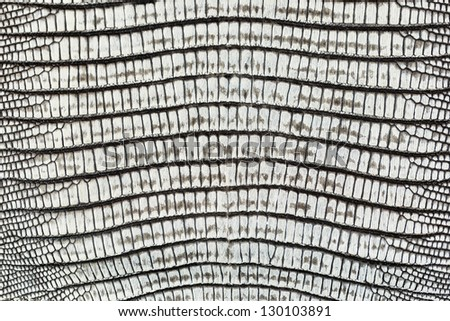 Lizard skin pattern on leather handbag - closeup background - stock photo