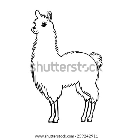 429460514459119072 in addition 488148047084434914 besides Llama Drawing 259242911 moreover Gezicht Paasmand also This Fox Is Really Happy And Wants To Share Its. on unicorn head clip art