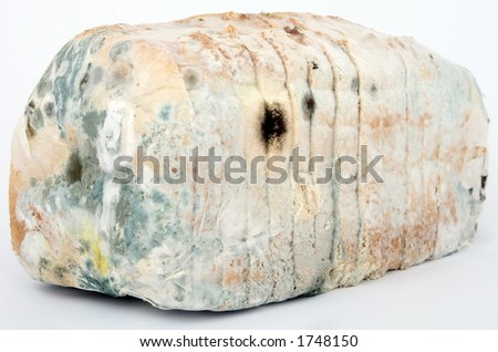 Loaf of mouldy white bread, macro close up, isolated on white, - stock photo