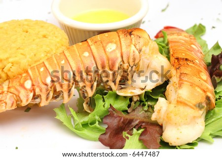 Lobster & butter with a salad - stock photo