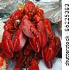 lobster. The fish market. Bergen. Norway. - stock photo