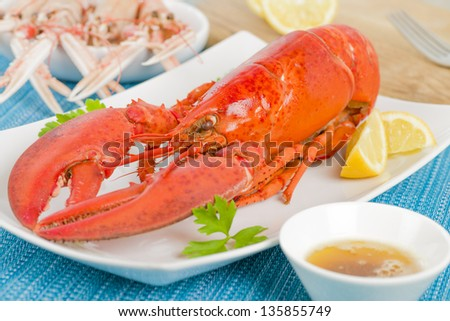 Lobster with browned butter and lemon wedges. Langoustines in background. - stock photo
