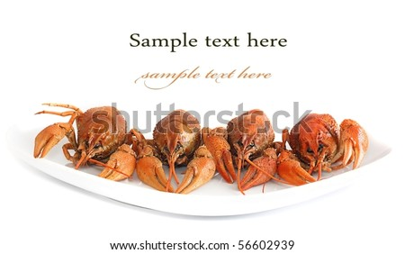 Lobsters on plate close up isolated on white - stock photo