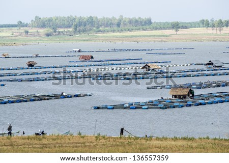 Local Asian Fish Farm - stock photo