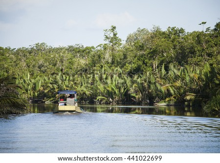 Local 'klotok' boat on Sekonyer River into Tanjung Puting Jungle, Borneo, Indonesia   - stock photo