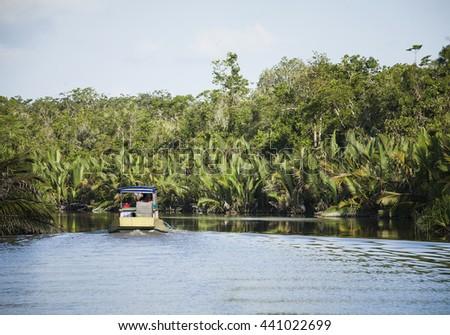 Rainforest River In Tanjung Puting National Park Kalimantan Borneo ...
