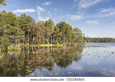 Loch Garten in Autumn. - stock photo