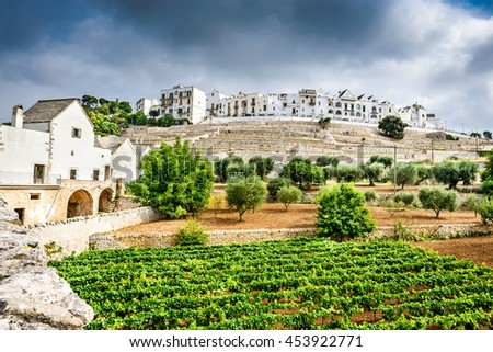 Locorotondo, Italy. Panoramic view of whitwashed city in Italian region of Puglia (Apulia). Town known for its wines and for its circular structure which is now a historical center. - stock photo