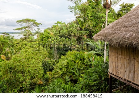Lodge, amazon rainforest, National Park Yasuni, south america  - stock photo