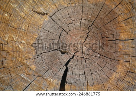 log in section - stock photo