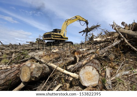 Log loader with crane with jaws loading logs onto a stack  - stock photo