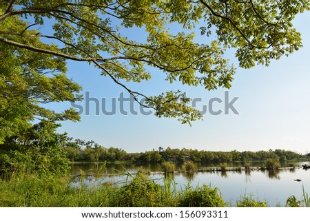 Log pond, shot at Luodong Forestry Culture Garden, Yilan county - stock photo