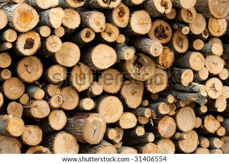 Log stack at logging site ready to be transported to the lumber mill - stock photo