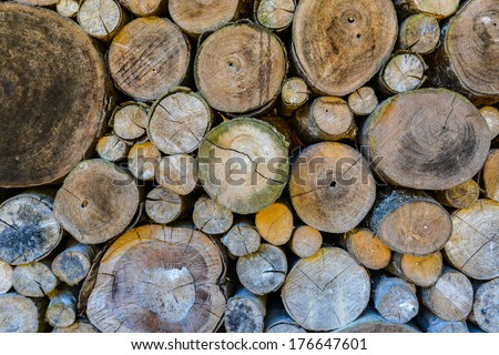 Log wood wall background. - stock photo
