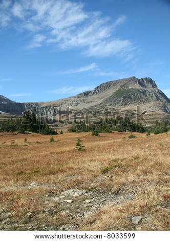 Logan pass,Bearhat Mountain,meadow in foreground,	Glacier National Park,		Montana